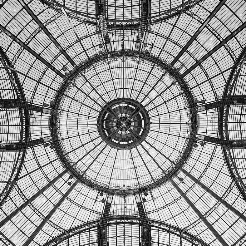 The Dome - le Grand Palais - Paris